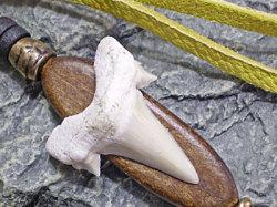 海のお守り★サメ歯化石ストラップ【鹿革/イエロー】