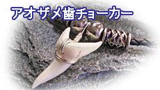 アオザメ歯チョーカー