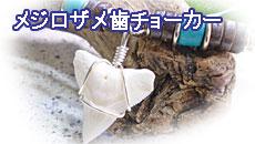 メジロザメ歯チョーカー
